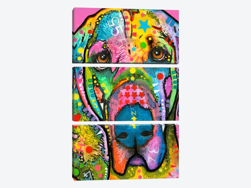 Bloodhound by Dean Russo 3-piece Canvas Artwork
