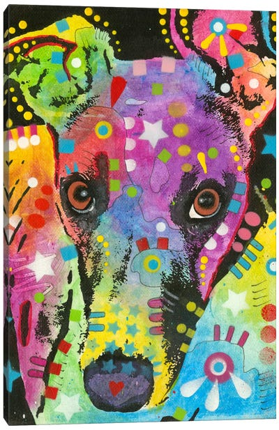 Curious Greyhound Canvas Print #DRO143