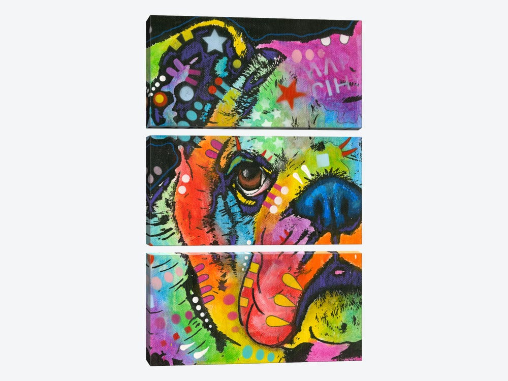 What You Lookin At by Dean Russo 3-piece Canvas Art