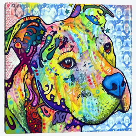Thoughtful Pit Bull This Years I Canvas Print #DRO14} by Dean Russo Canvas Art