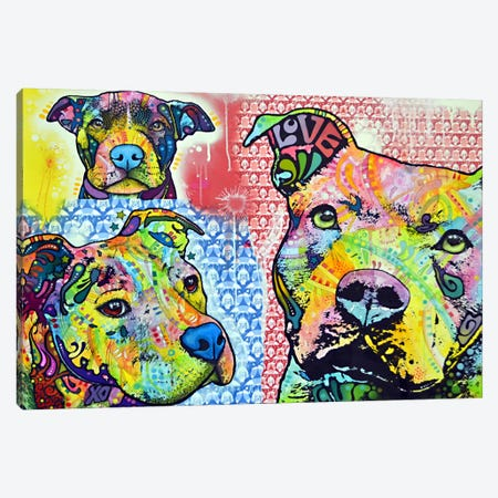Thoughtful Pit Bull This Years II Canvas Print #DRO15} by Dean Russo Canvas Art