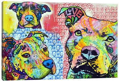 Thoughtful Pit Bull This Years II Canvas Print #DRO15