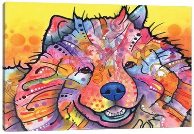 Benzi Canvas Print #DRO169