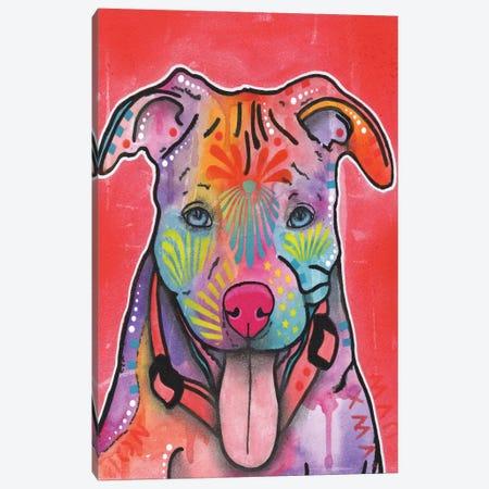 Knipp Canvas Print #DRO180} by Dean Russo Canvas Artwork