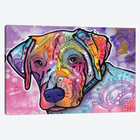 Petunia Canvas Print #DRO184} by Dean Russo Art Print