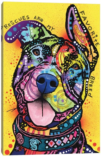 Rescues Are My Favorite Breed Canvas Print #DRO198