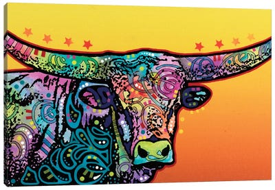 The Longhorn Canvas Art Print