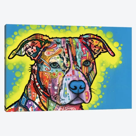 Painted Pit Canvas Print #DRO239} by Dean Russo Canvas Wall Art