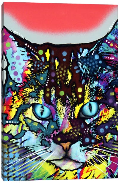 Maine Coon Canvas Print #DRO24