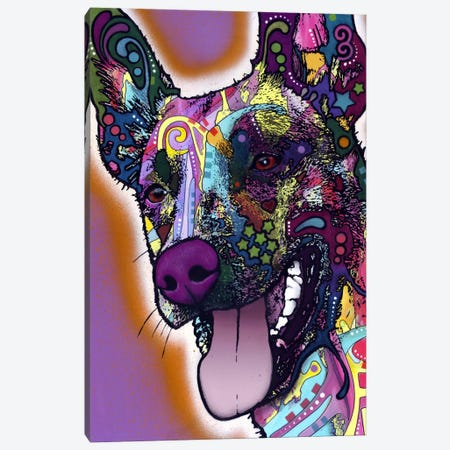 Malinois Canvas Print #DRO25} by Dean Russo Art Print