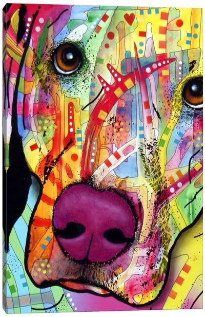 Close Up Lab Canvas Art Print