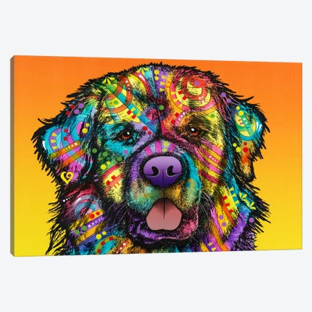 Newfie Canvas Print #DRO278} by Dean Russo Canvas Wall Art