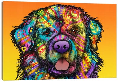 Newfie Canvas Art Print
