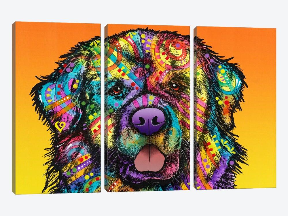 Newfie by Dean Russo 3-piece Canvas Art Print
