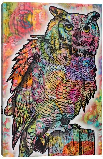 Owl Perch Canvas Print #DRO303