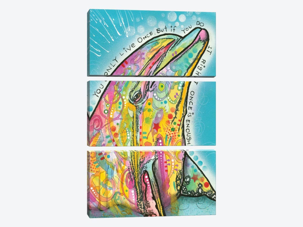 Dolphin by Dean Russo 3-piece Canvas Art Print