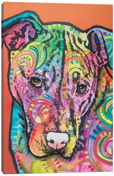 Sweetie Pie IV Canvas Art Print