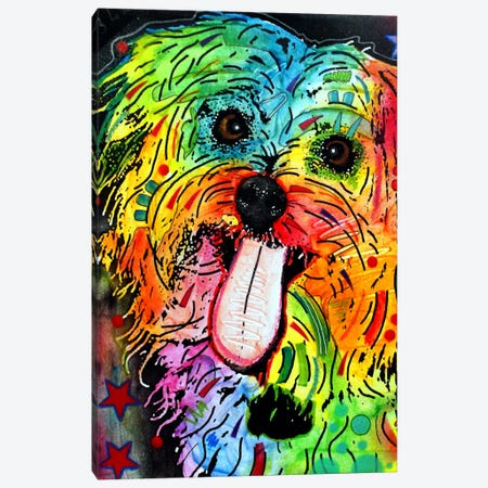 Shih Tzu Canvas Print #DRO33} by Dean Russo Canvas Art Print