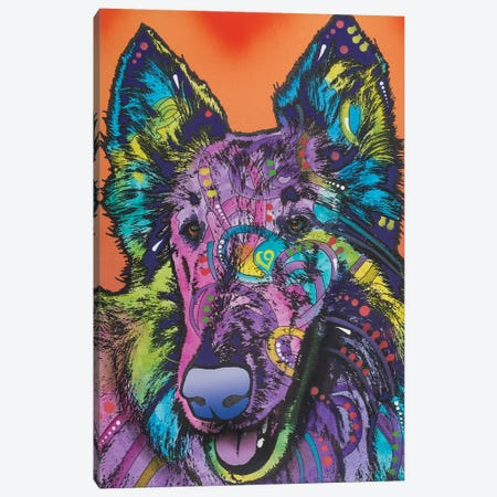 Ava, Collie Canvas Print #DRO347} by Dean Russo Art Print