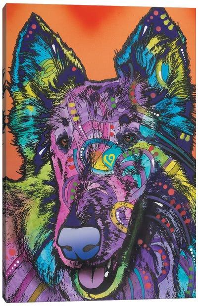 Ava, Collie Canvas Art Print