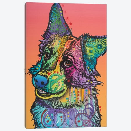 Axel, Collie Mix Canvas Print #DRO348} by Dean Russo Canvas Wall Art