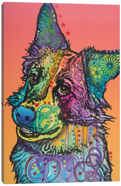 Axel, Collie Mix Canvas Art Print