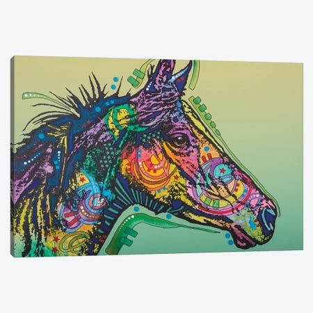 Basha, Horse Canvas Print #DRO349} by Dean Russo Canvas Wall Art