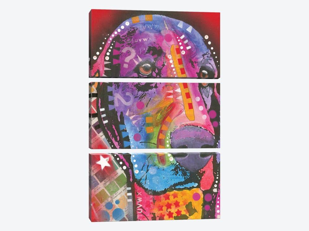 Basset Hound by Dean Russo 3-piece Canvas Art