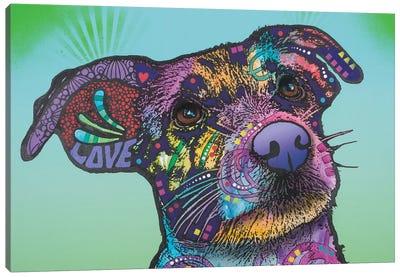 Beaker, Jack Russell Terrier Canvas Art Print