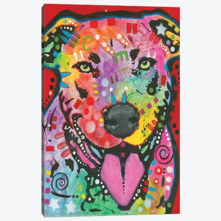 Bull Terrier Canvas Print #DRO361} by Dean Russo Canvas Art