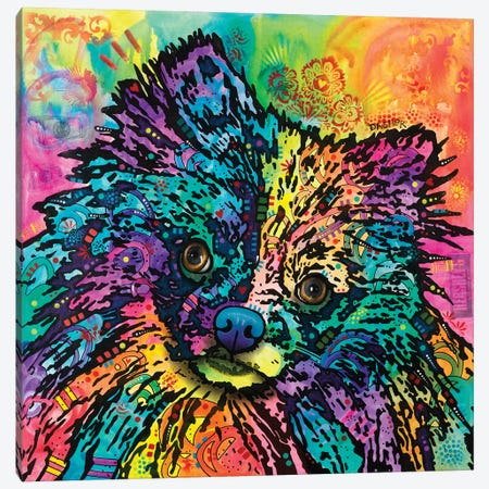 Dasher Canvas Print #DRO379} by Dean Russo Canvas Print