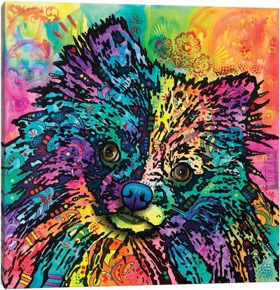 Dasher Canvas Art Print