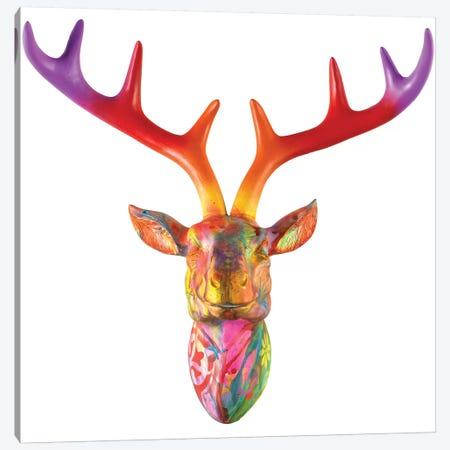 Deer Bust Canvas Print #DRO380} by Dean Russo Canvas Wall Art