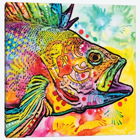 Fish Canvas Print #DRO396} by Dean Russo Canvas Wall Art