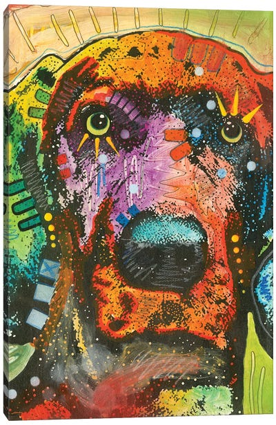 Great Dane I Canvas Art Print