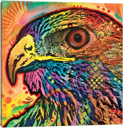Hawk Eye Canvas Art Print