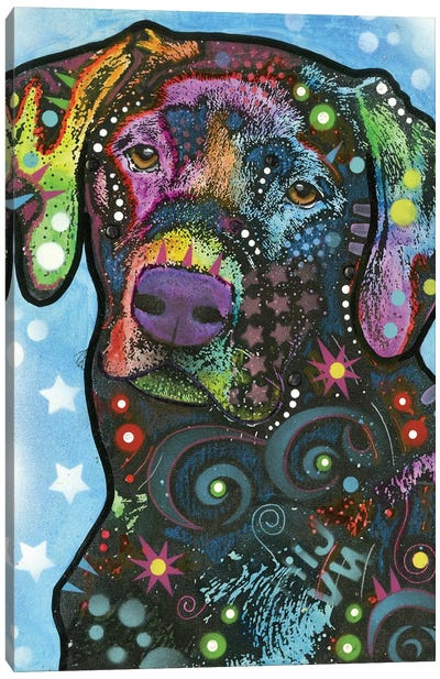 Labrador IV Canvas Art Print