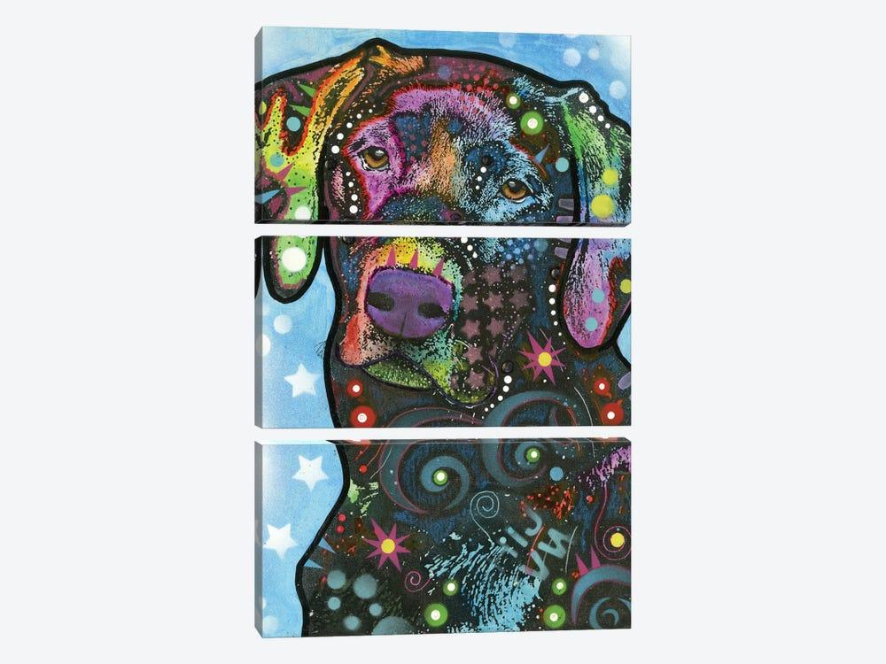 Labrador IV by Dean Russo 3-piece Canvas Artwork