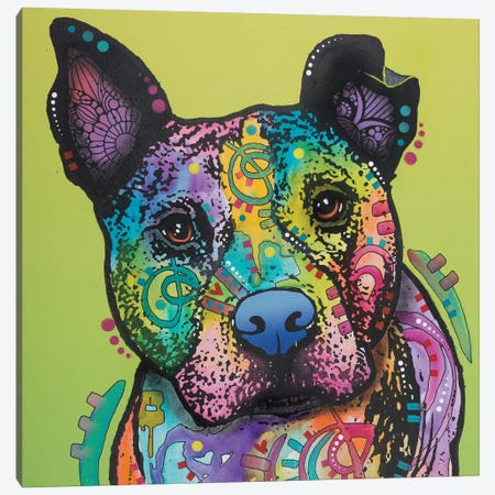 Lucy The Dog Canvas Print #DRO460} by Dean Russo Art Print