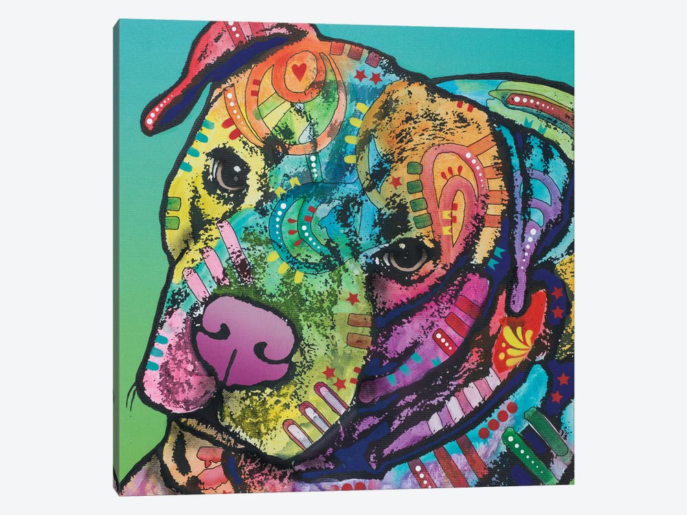 Mr. Brownie by Dean Russo 1-piece Canvas Print