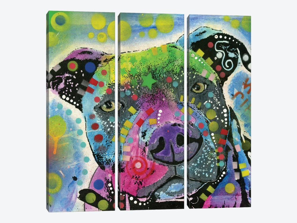 Pit Bull III by Dean Russo 3-piece Canvas Art Print