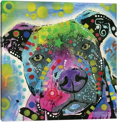Pit Bull III Canvas Art Print