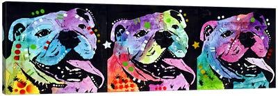 3 Bulldogs Canvas Art Print