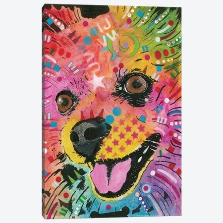 Pomeranian Canvas Print #DRO491} by Dean Russo Canvas Art