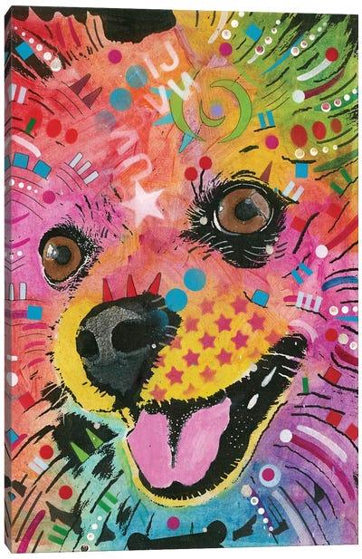 Pomeranian Canvas Art Print