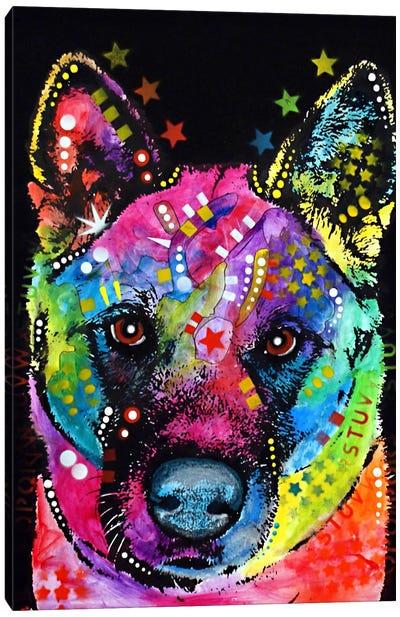 Akita Canvas Print #DRO50