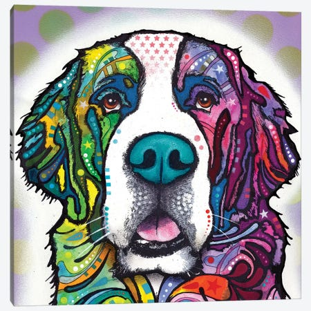 Saint Bernard Canvas Print #DRO520} by Dean Russo Canvas Art