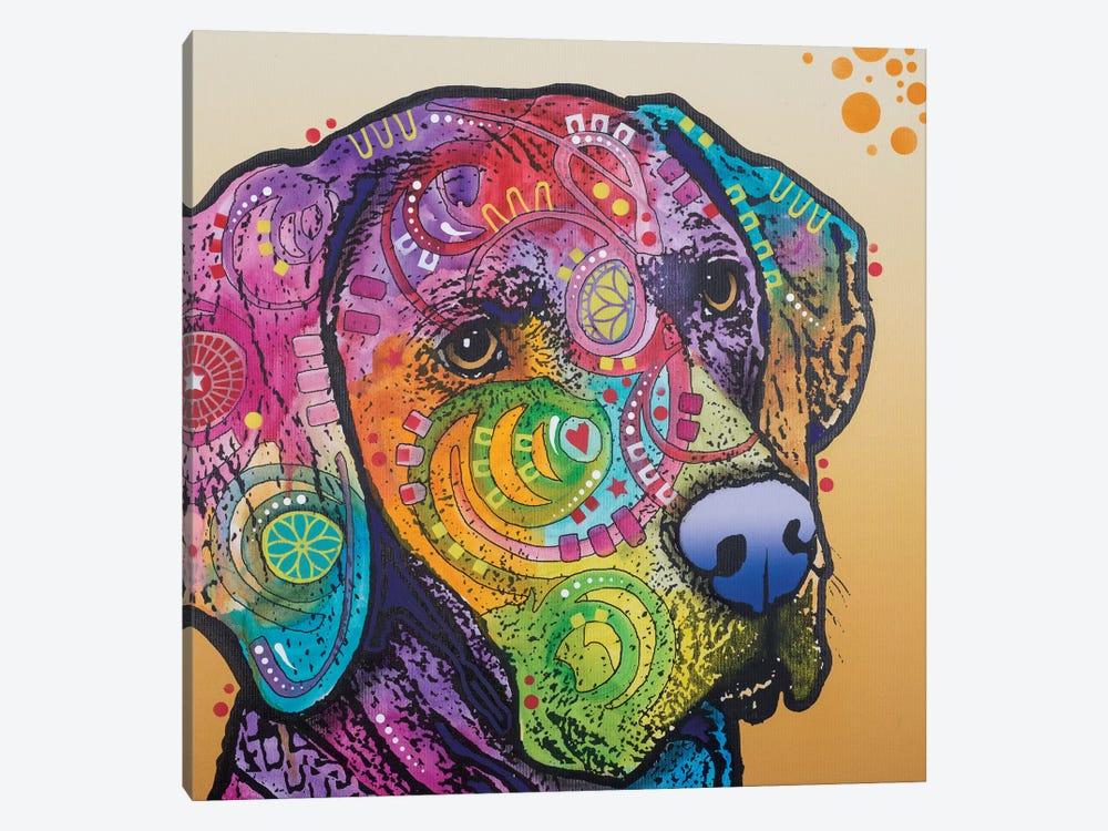 Samson by Dean Russo 1-piece Canvas Artwork