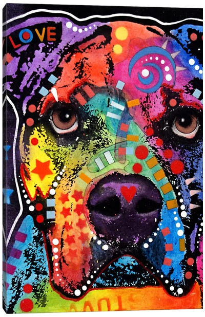 American Bulldog II Canvas Art Print