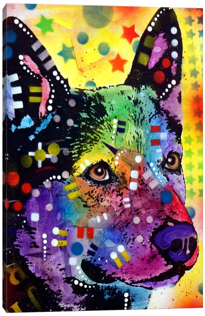 Aus Cattle Dog Canvas Art Print